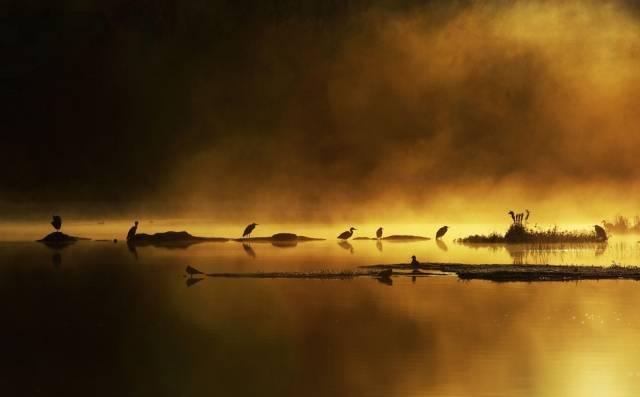 Fotografiile unei naturi demne de apreciat - Poza 14