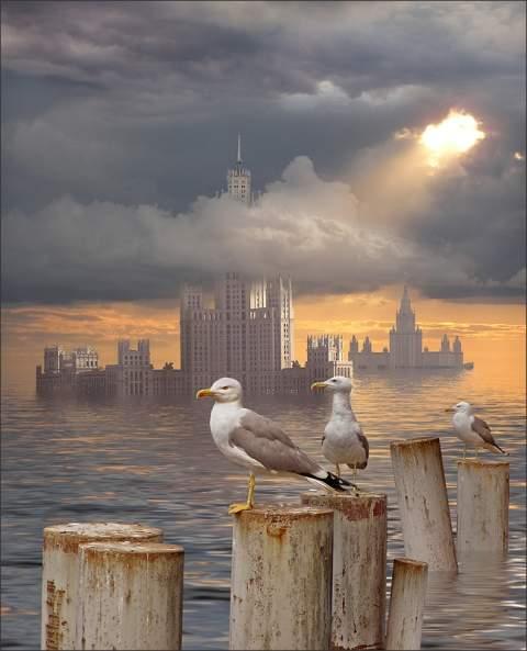 Fotografiile unei naturi demne de apreciat - Poza 5