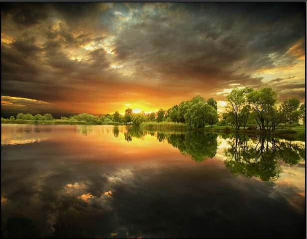 Fotografiile unei naturi demne de apreciere
