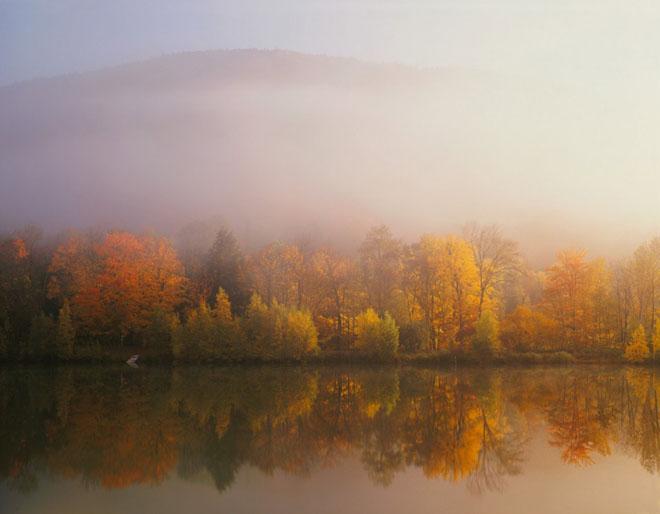 20 de fotografii cu natura de William Neill - Poza 10