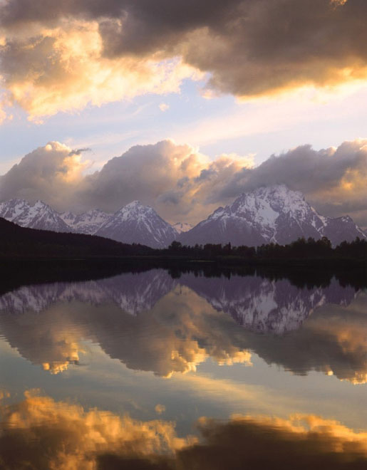 20 de fotografii cu natura de William Neill - Poza 17