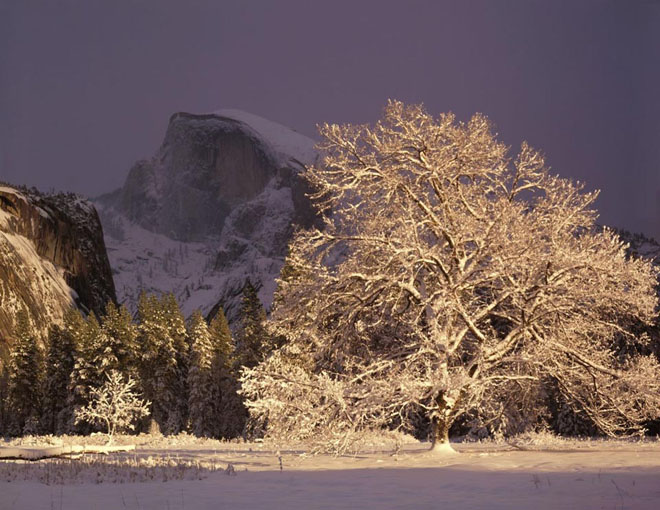 20 de fotografii cu natura de William Neill - Poza 7