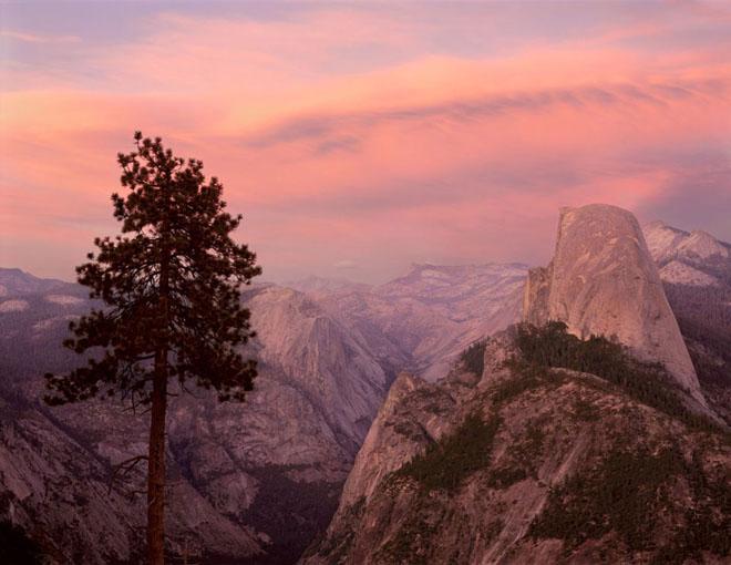 20 de fotografii cu natura de William Neill - Poza 8
