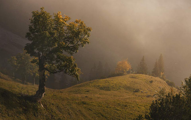 Natura in 25 de fotografii de Norbert Maier - Poza 13