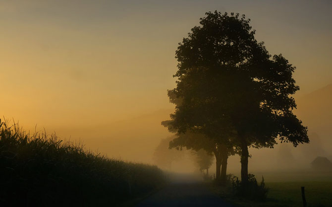 Natura in 25 de fotografii de Norbert Maier - Poza 14