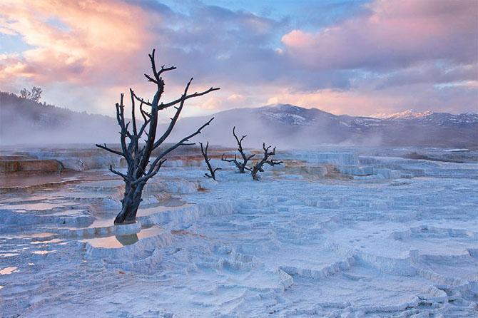 Natura in 30 de fotografii de Stephen Oachs - Poza 4