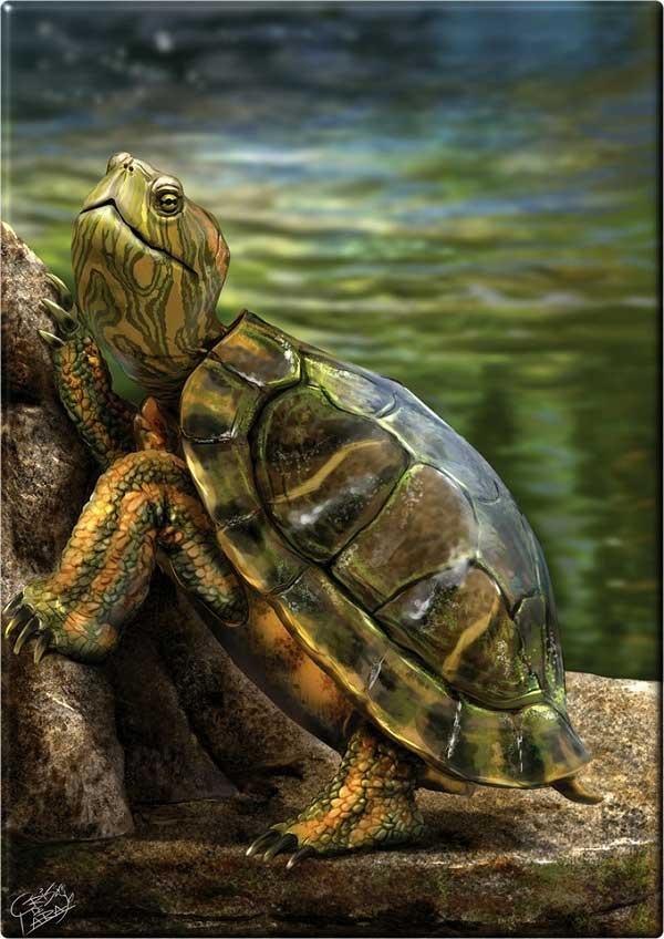 Digital Painting: 15 creatii excelente - Poza 12
