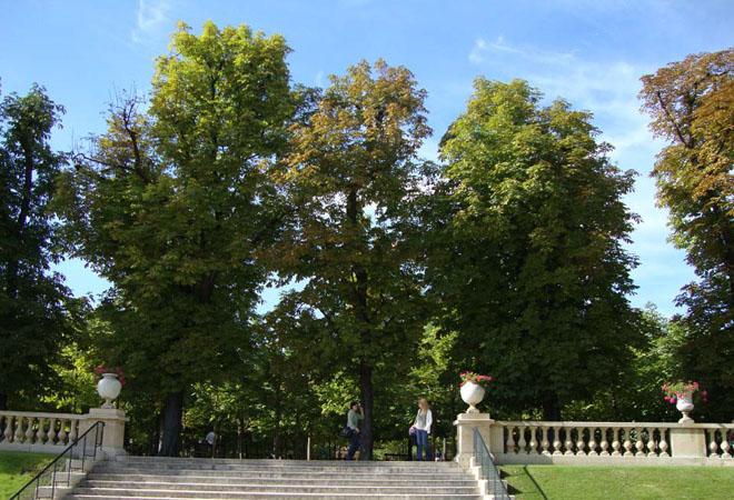 Sa descoperim Parisul (I) - Poza 12