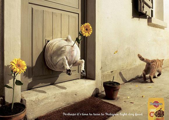 40 de reclame amuzante - Poza 1