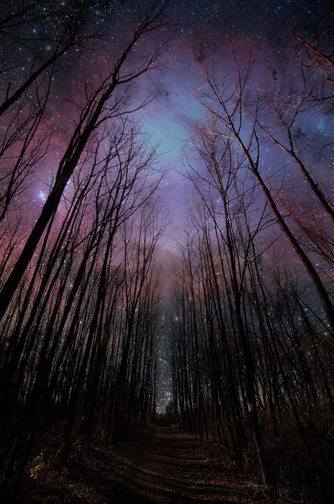 Cerul perfect - Poza 29