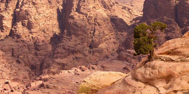 Petra, orasul sapat in piatra - Poza 4