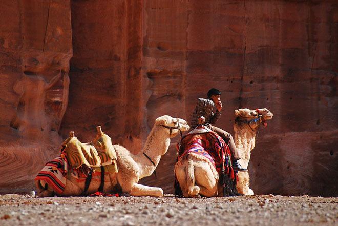 Petra, orasul sapat in piatra - Poza 7