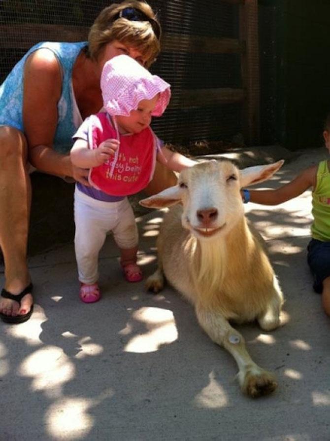 20 de poze induiosatoare cu animale - Poza 3