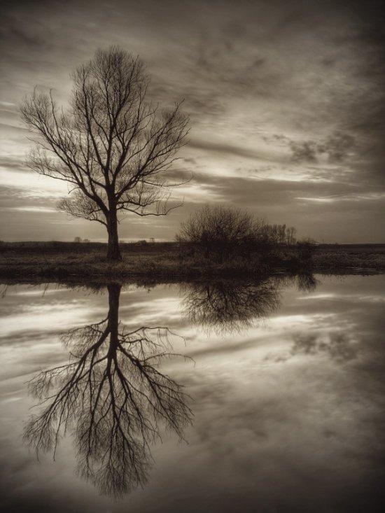 45 de fotografii superbe cu reflexii - Poza 37
