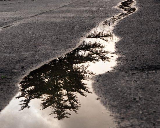 45 de fotografii superbe cu reflexii - Poza 9