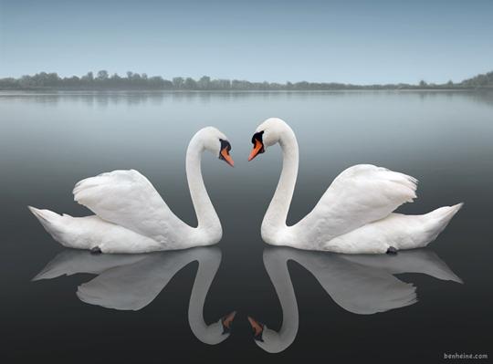 45 de fotografii cu reflexii impresionante - Poza 3