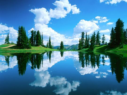 45 de fotografii cu reflexii impresionante - Poza 9