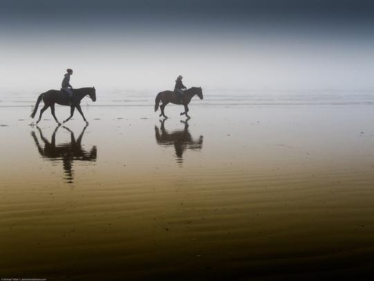 45 de fotografii cu reflexii impresionante - Poza 12