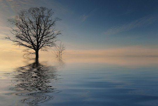 45 de fotografii cu reflexii impresionante - Poza 20