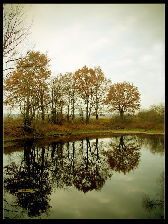 45 de fotografii cu reflexii impresionante - Poza 26