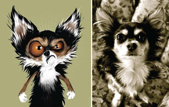 Portrete simpatice cu pisici si caini - Poza 21