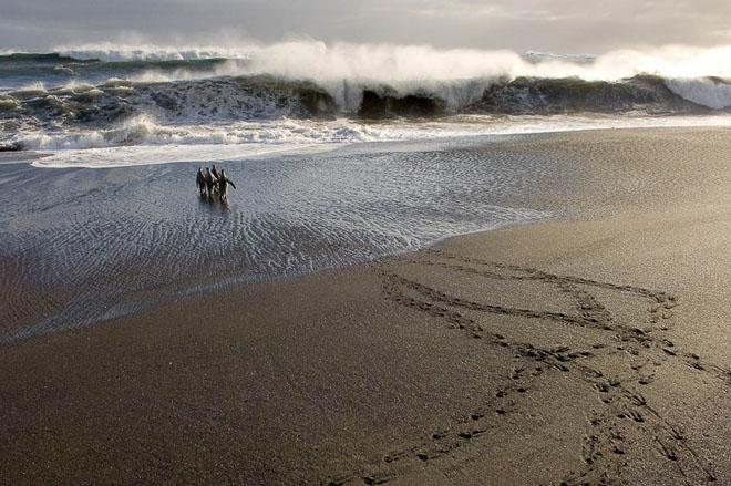 25 de fotografii cu frumoasa natura salbatica - Poza 8