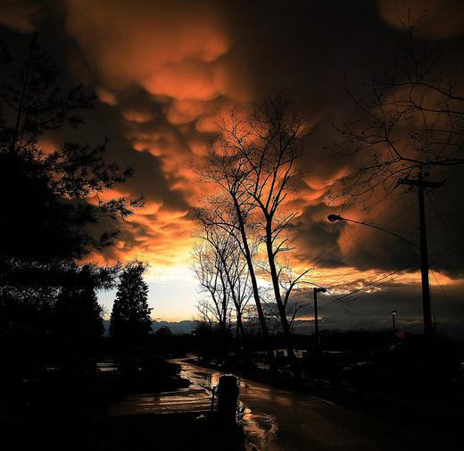 Natura dezlantuita: 30 de poze cu furtuni - Poza 21