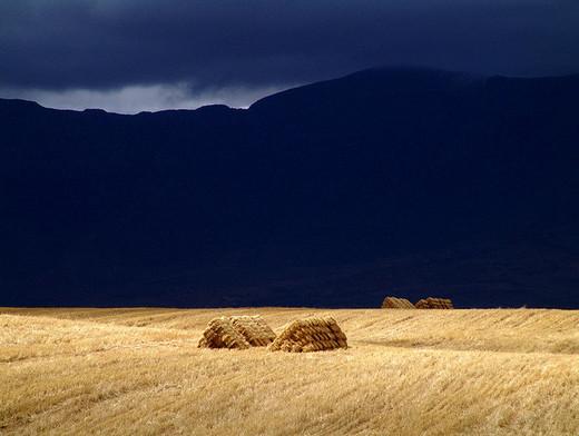 Natura dezlantuita: 30 de poze cu furtuni - Poza 29