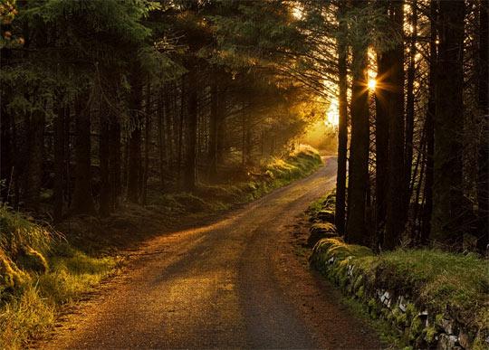 La rasarit de soare: 33 de poze minunate - Poza 10