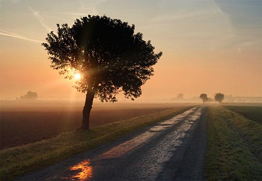 La rasarit de soare: 33 de poze minunate - Poza 14