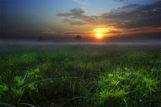 La rasarit de soare: 33 de poze minunate - Poza 18