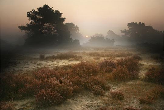 La rasarit de soare: 33 de poze minunate