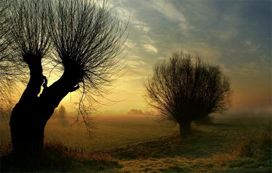 La rasarit de soare: 33 de poze minunate - Poza 25
