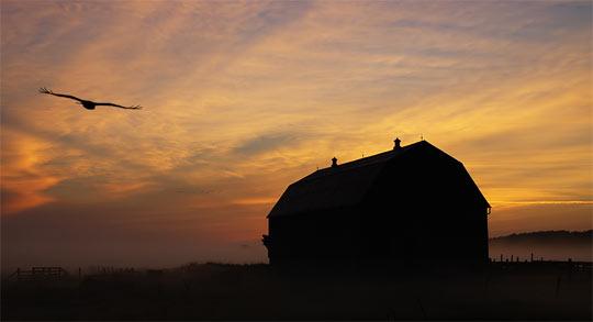 La rasarit de soare: 33 de poze minunate - Poza 31