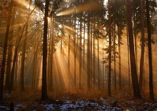 La rasarit de soare: 33 de poze minunate - Poza 4
