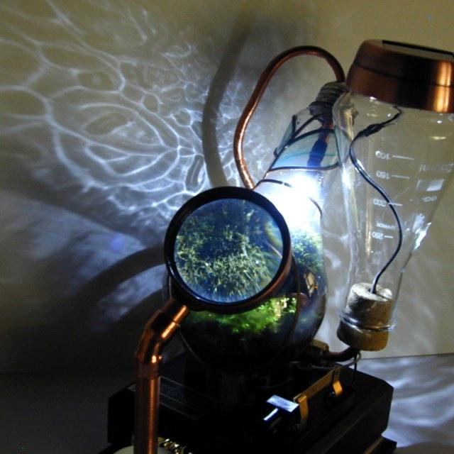 Botanical Vasculum - Poza 5
