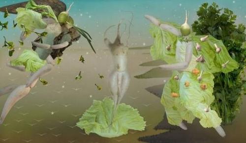 Opere de arta din legume - Poza 16