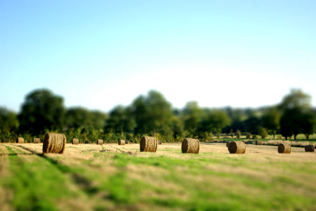 30 de poze: Tilt-Shift Photography - Poza 20
