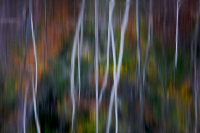 Tim Laman are 30 de poze pentru tine - Poza 5