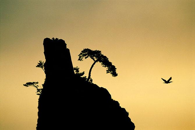 Tim Laman are 30 de poze pentru tine - Poza 9