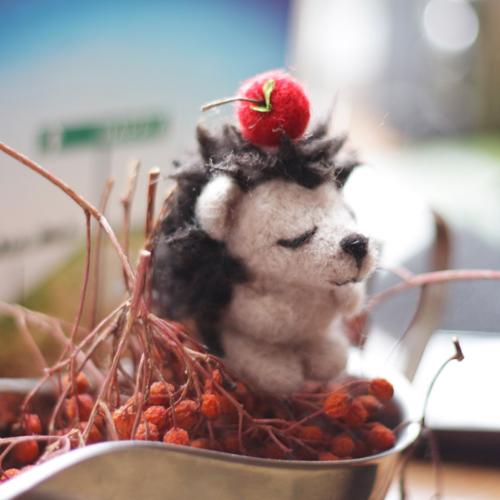 Papusi handmade in poze - Poza 9