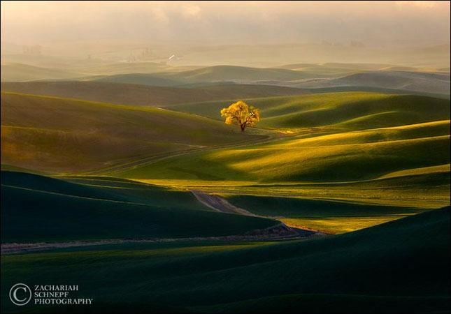 Natura fotografiata de Zaxk Scnepf