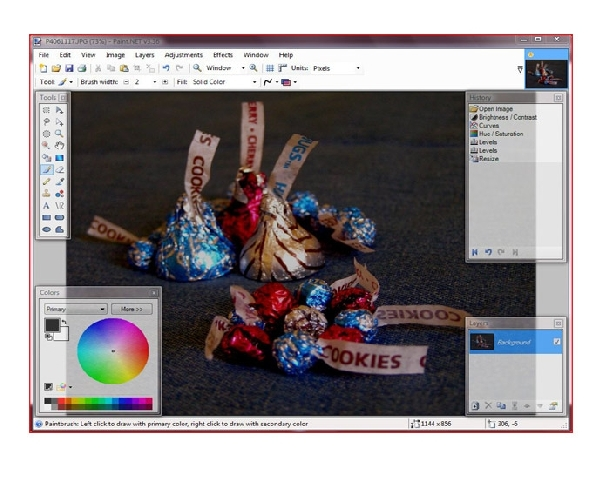 Foto 2: Paint.NET deschide acum .PSD