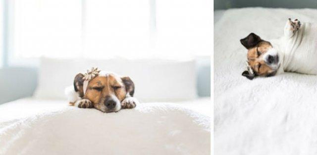 Adorabil! O altfel de sedinta foto cu un nou-nascut - Poza 13