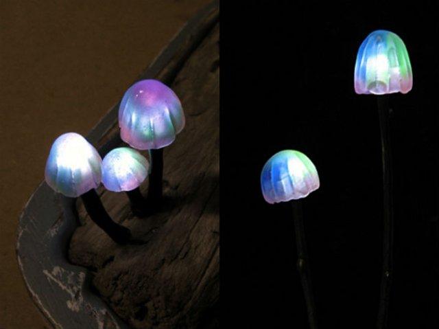Ciuperci luminoase multicolore ce aduc magie in incaperi - Poza 10
