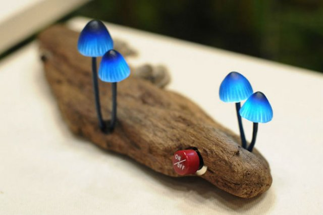 Ciuperci luminoase multicolore ce aduc magie in incaperi - Poza 2