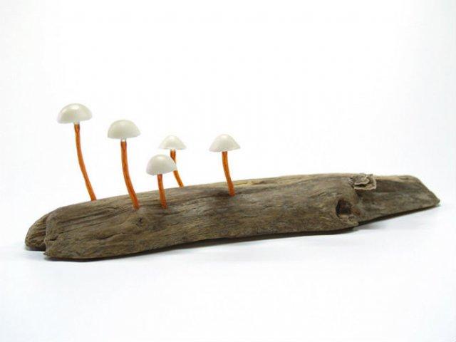 Ciuperci luminoase multicolore ce aduc magie in incaperi - Poza 3