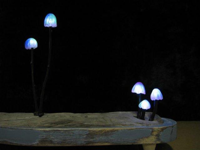 Ciuperci luminoase multicolore ce aduc magie in incaperi - Poza 7