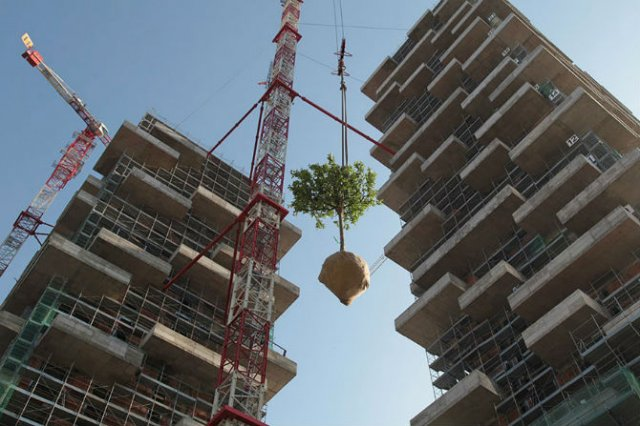 Turnul cedrilor: O padure verticala locuibila, in mijlocul orasului - Poza 6