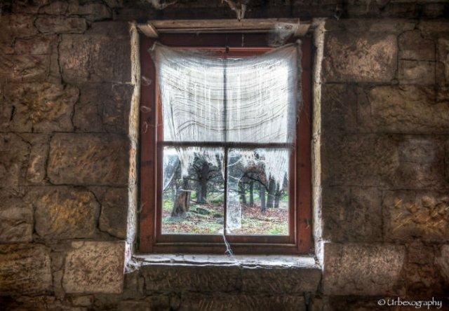 Ferestrele magice: Aduc un aer viu cladirilor abandonate - Poza 2